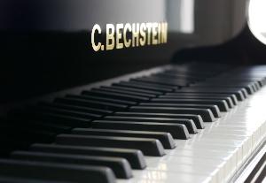 bech-300